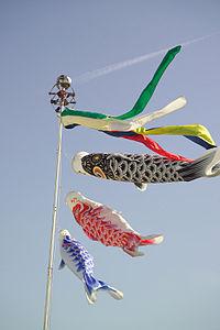 こいのぼり(上から矢車、吹き流し、真鯉、緋鯉、子鯉).jpg