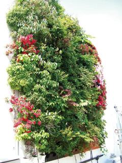 樹木対応型壁面緑化システム「バーティカルフォレスト.jpg