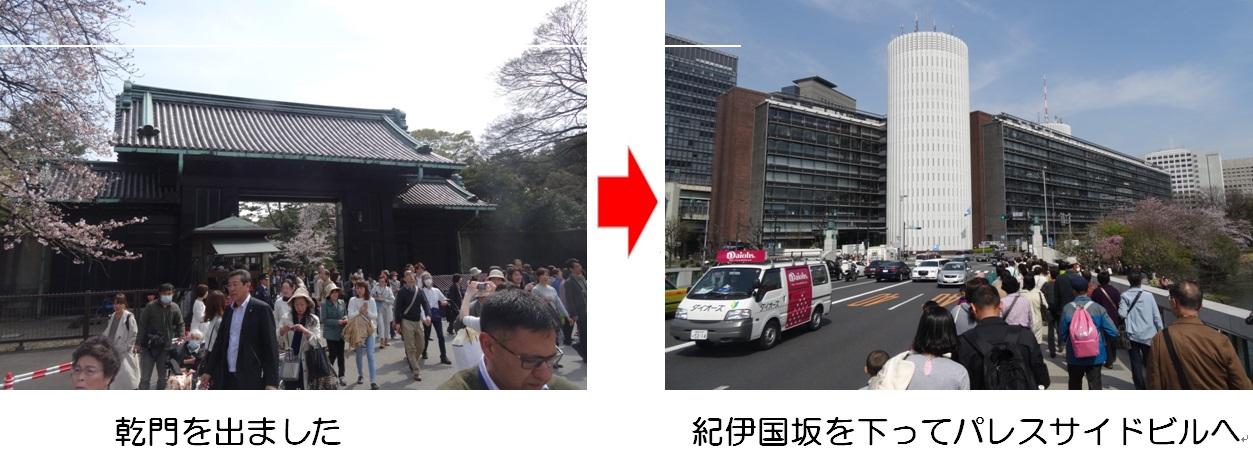 20160331通り抜け③.jpg