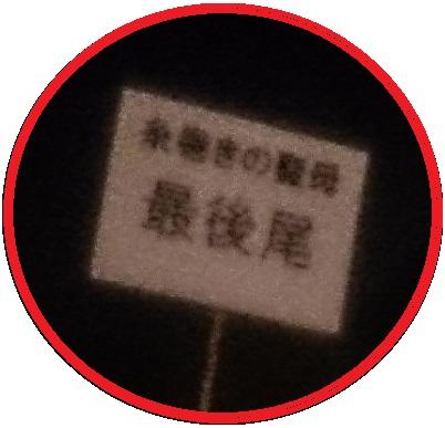 DSC_7291トリ2.jpg